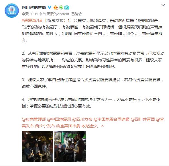 四川长宁燕群聚集视频片段