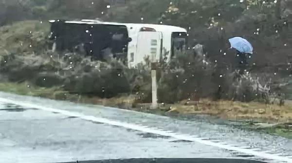 新西兰一大巴翻车 已致包括中国游客在内6人死亡