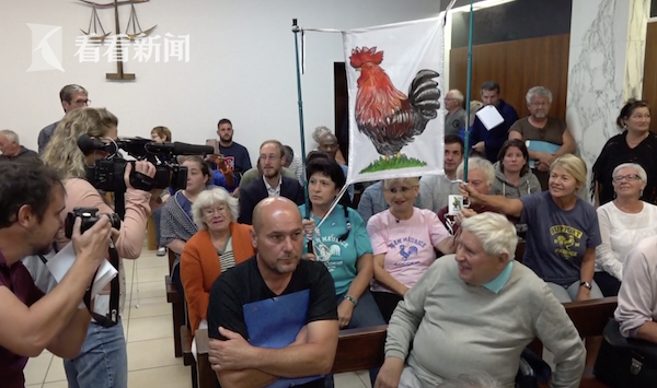 法国打鸣公鸡胜诉 12万人签名支持它清晨打鸣